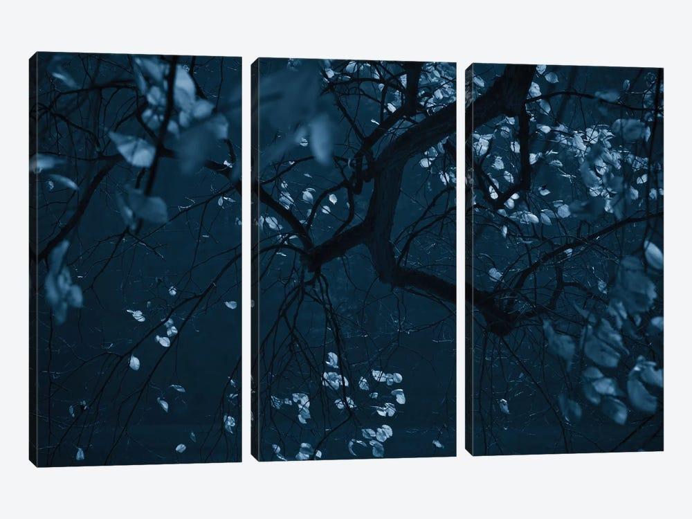 Fall Night by Dorit Fuhg 3-piece Art Print