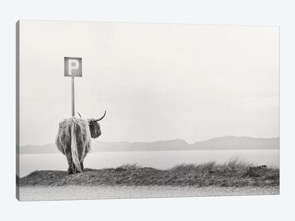 Highland Visitor by Dorit Fuhg 1-piece Canvas Art Print