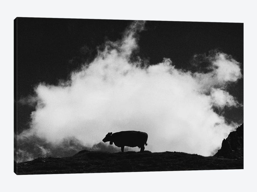 Cow And Cloud 1-piece Canvas Print