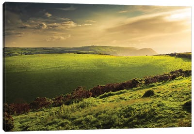 Illuminated Evening Landscape Canvas Art Print