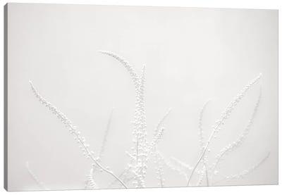 Imagine Too Canvas Art Print