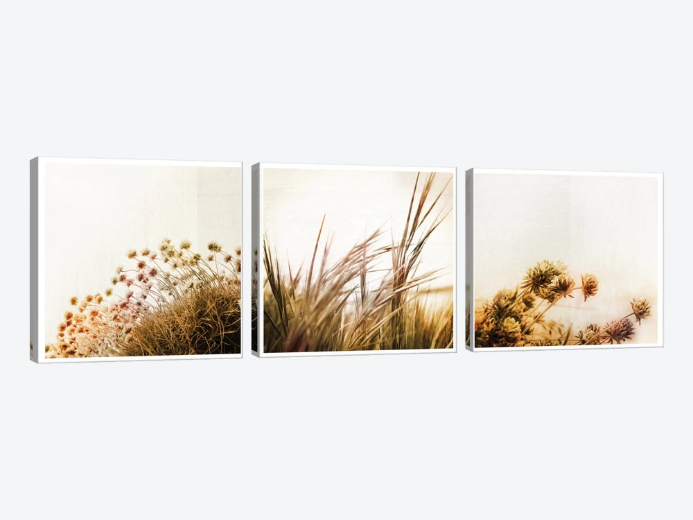 Adagio Triptych by Dorit Fuhg 3-piece Art Print