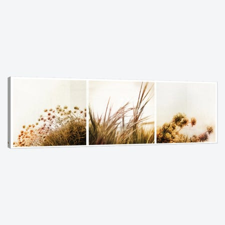 Adagio Triptych Canvas Print #DFU5} by Dorit Fuhg Canvas Print