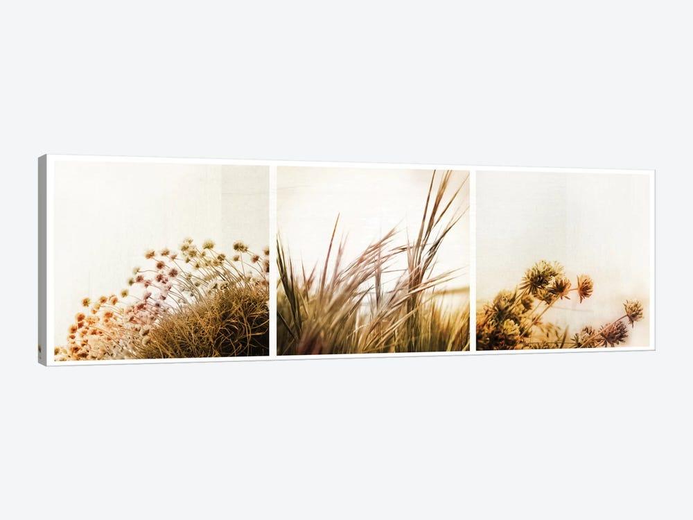 Adagio Triptych by Dorit Fuhg 1-piece Canvas Art Print