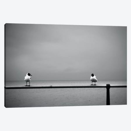 So... Now That I Got You Alone, How About... Canvas Print #DFU66} by Dorit Fuhg Art Print