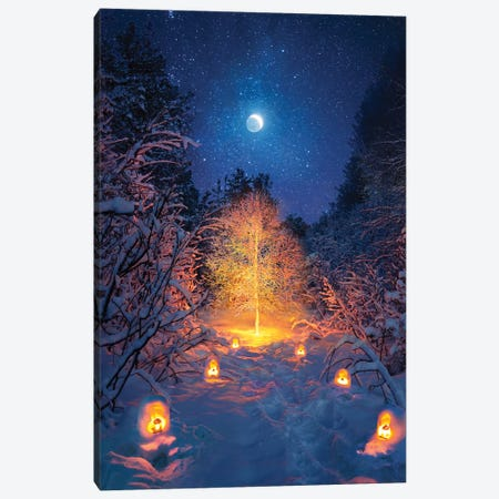Tree Light Canvas Print #DGH44} by Diego Hernandez Art Print