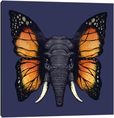 Elefly Canvas Art Print