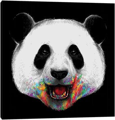 Where Is The Rainbow Canvas Art Print