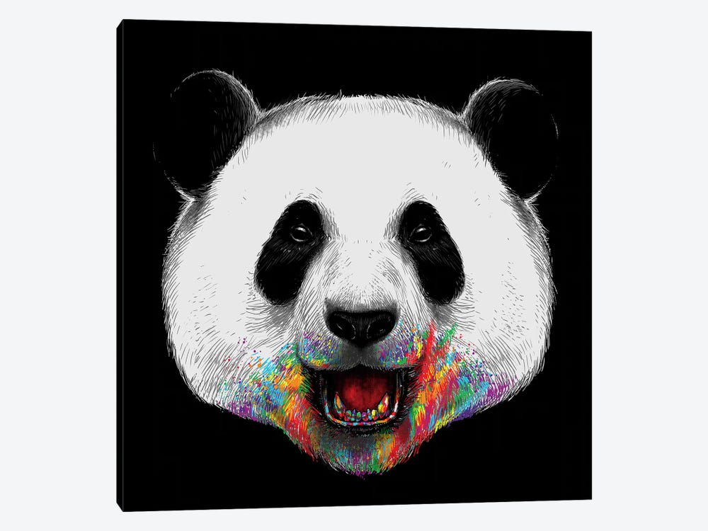 Where Is The Rainbow by Digital Carbine 1-piece Canvas Art Print