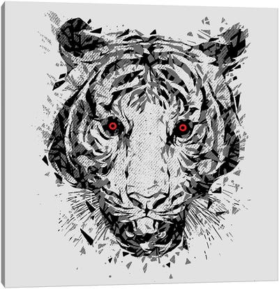 Wild Eyes Canvas Art Print