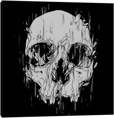 Broken Skull Canvas Art Print