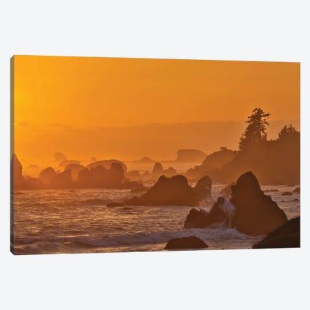 Sunset And Sea Stacks Along The Northern California Coastline, Crescent City Canvas Print #DGU168} by Darrell Gulin Canvas Art Print