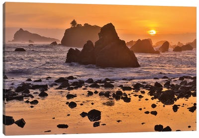 Sunset And Sea Stacks Along The Northern California Coastline, Crescent City Canvas Art Print