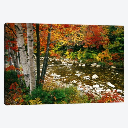 Autumn Landscape, Swift River, White Mountains, New Hampshire, USA Canvas Print #DGU47} by Darrell Gulin Canvas Artwork