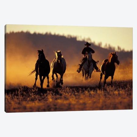 Horse Roundup, Ponderosa Ranch, Seneca, Grant County, Oregon, USA Canvas Print #DGU49} by Darrell Gulin Canvas Art Print