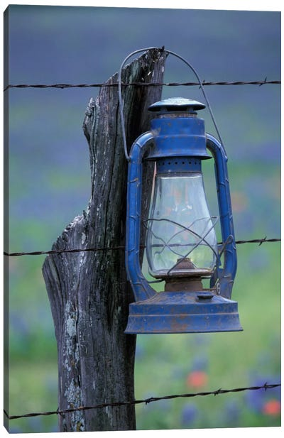 Blue Lantern Hanging On A Barbed Wire Fence Post, Lytle, Texas, USA Canvas Art Print