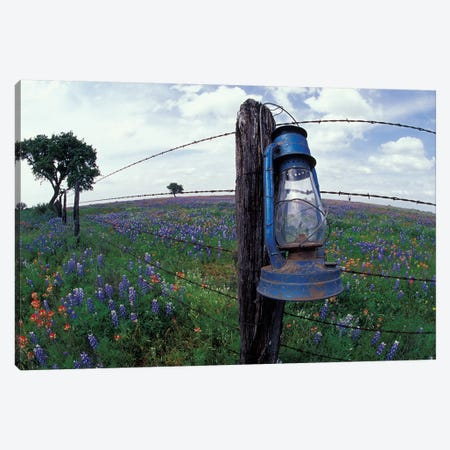 Wide-Angle View Of A Blue Lantern Hanging On A Barbed Wire Fence Post In A Wildflower Field, Lytle, Texas, USA Canvas Print #DGU52} by Darrell Gulin Canvas Artwork