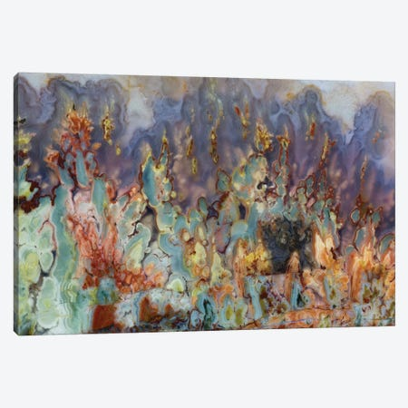 Prudent Man Agate In Zoom 3-Piece Canvas #DGU56} by Darrell Gulin Art Print