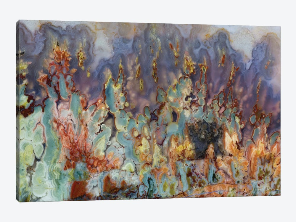 Prudent Man Agate In Zoom by Darrell Gulin 1-piece Canvas Print