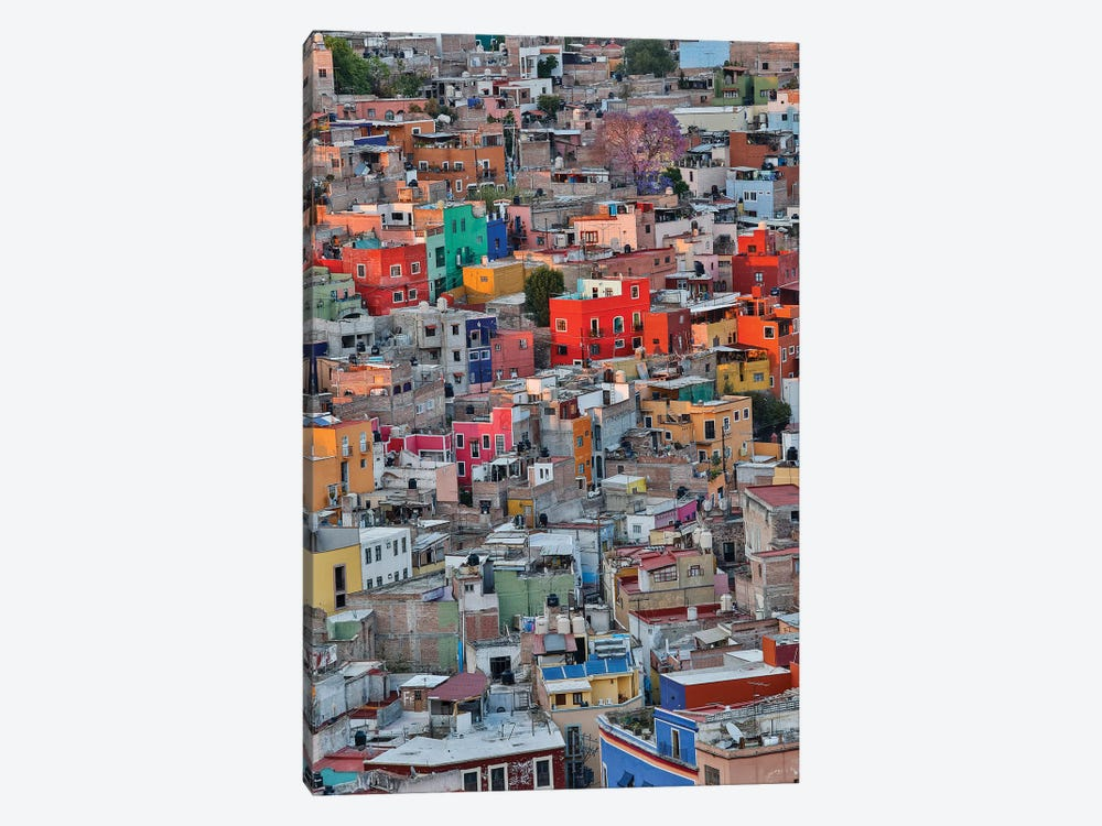 Guanajuato in Central Mexico. City overview in evening light with colorful buildings by Darrell Gulin 1-piece Canvas Wall Art