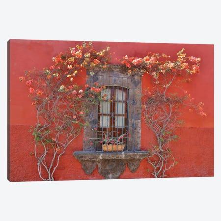 San Miguel De Allende, Mexico. Colorful buildings and windows Canvas Print #DGU93} by Darrell Gulin Canvas Art
