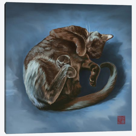 Curled And Comfy Canvas Print #DGZ14} by Dingzhong Hu Canvas Wall Art