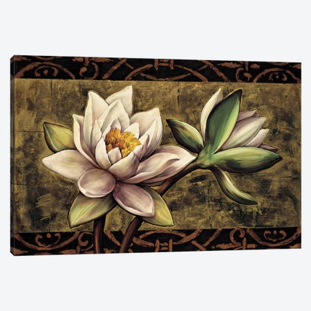Everlasting I Canvas Print #DHA3} by Diane Harper Canvas Art Print
