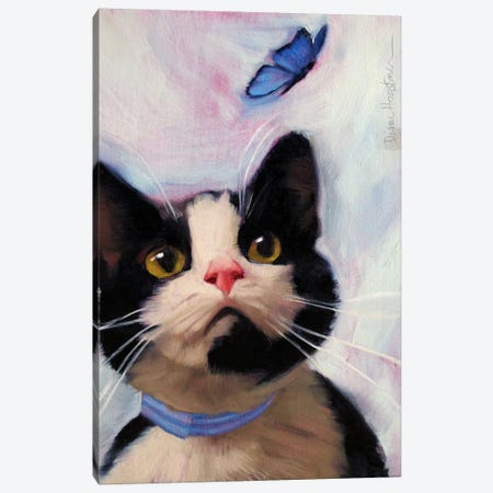 Cat And Butterfly Canvas Print #DHO1} by Diane Hoeptner Canvas Print
