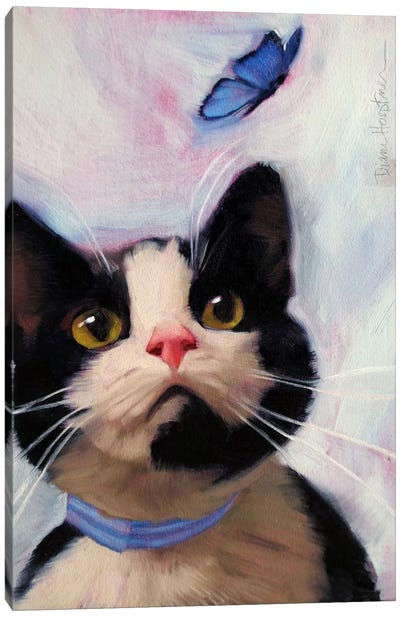 Cat And Butterfly Canvas Art Print