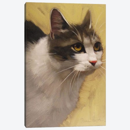Derby Cat Canvas Print #DHO2} by Diane Hoeptner Canvas Art Print