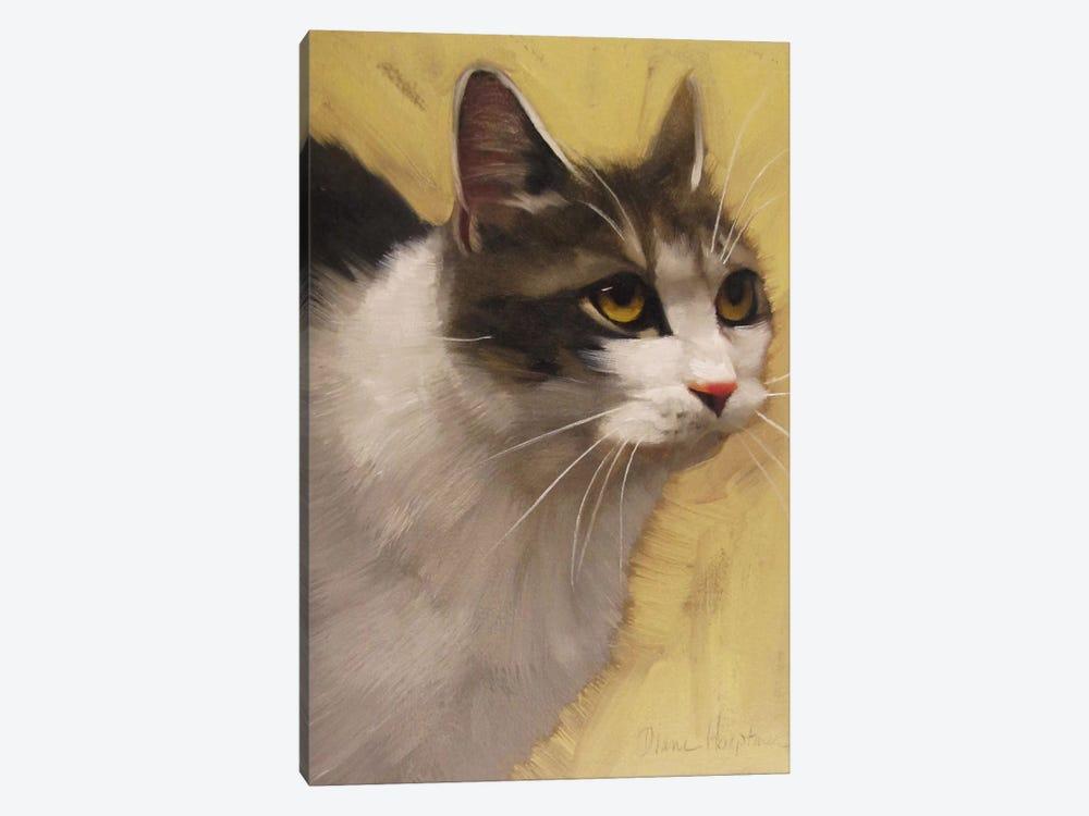Derby Cat by Diane Hoeptner 1-piece Canvas Art Print
