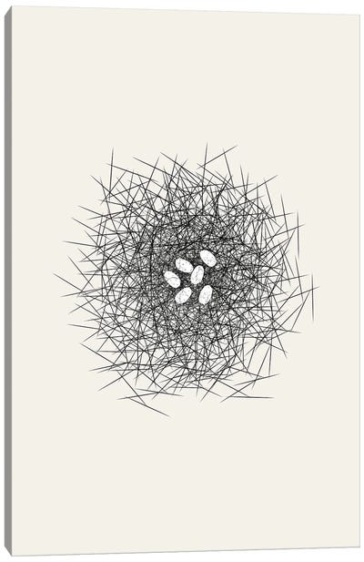 Nest Series - White Speckled Abstract Eggs Canvas Art Print