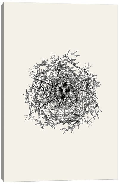 Nest Series - Black Speckled Abstract Eggs Canvas Art Print