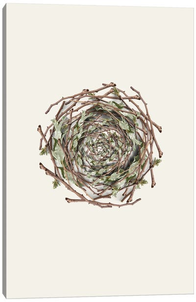 Nest Series - Natural Twigs Abstract Photography Canvas Art Print