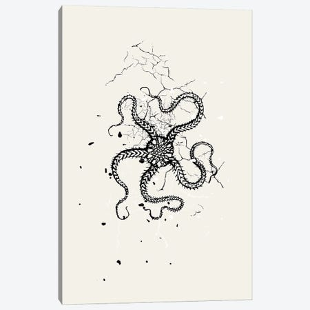 Squid Ink Canvas Print #DHV214} by Design Harvest Art Print