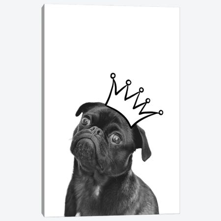 Cute Puppy With Crown Pug Dog Canvas Print #DHV25} by Design Harvest Art Print