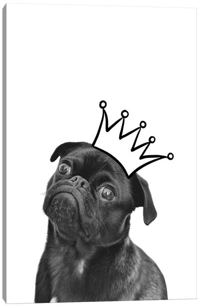 Cute Puppy With Crown Pug Dog Canvas Art Print