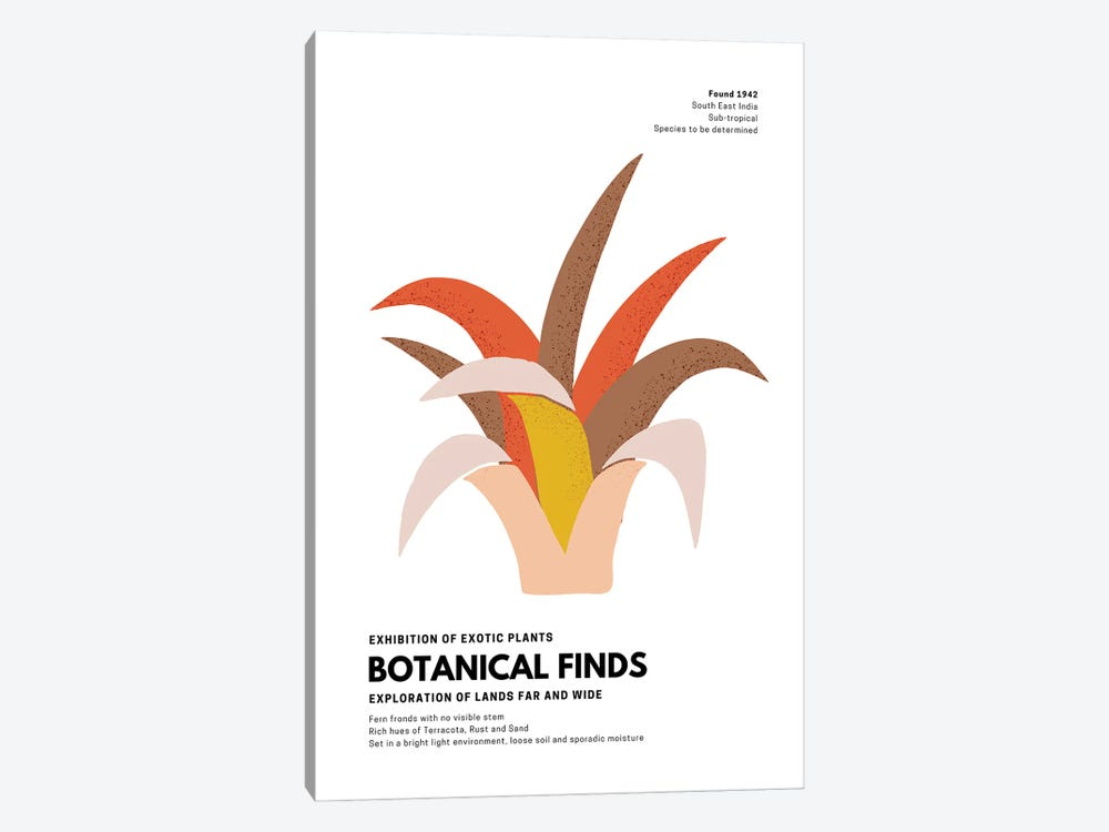 Botanical Finds Gallery Poster India by Design Harvest 1-piece Canvas Wall Art