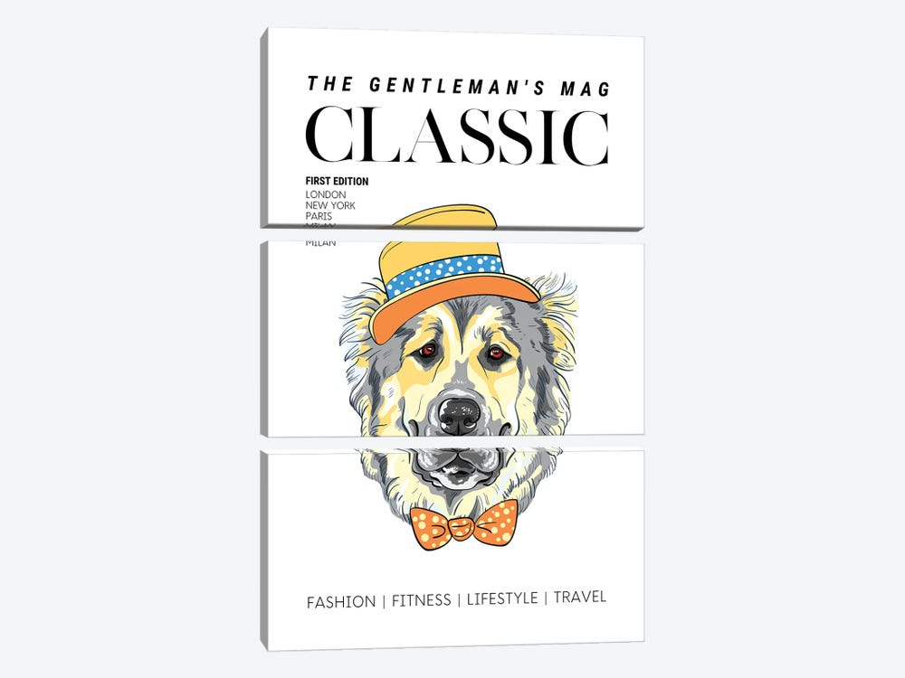 The Classic Gentleman'S Magazine Cover With Dressed Up Dog In Hat And Bowtie by Design Harvest 3-piece Canvas Print