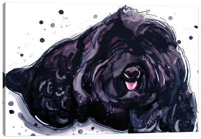 Fluffy Temptation Canvas Art Print