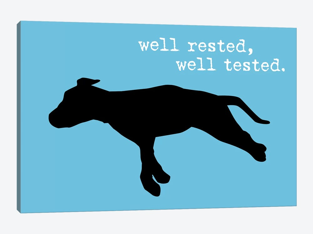Well Rested III by Dog is Good and Cat is Good 1-piece Canvas Wall Art