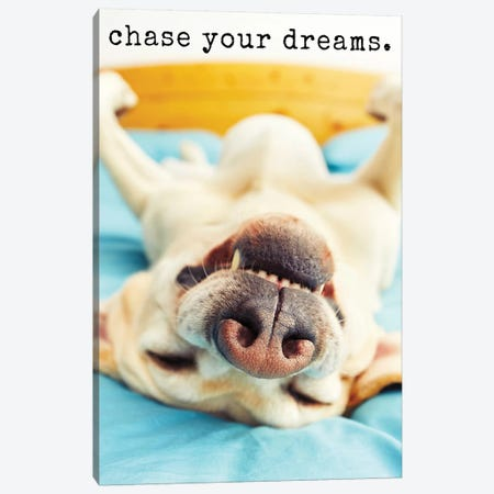Chase Dreams - Realistic Canvas Print #DIG15} by Dog is Good and Cat is Good Canvas Art
