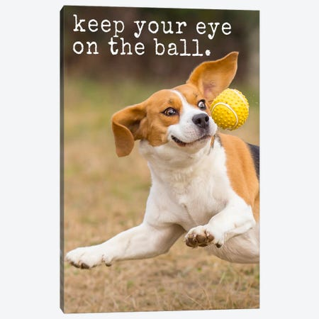 Eye On Ball - Realistic Canvas Print #DIG25} by Dog is Good and Cat is Good Canvas Print