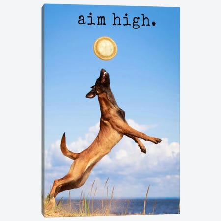 Aim High - Realistic Canvas Print #DIG2} by Dog is Good and Cat is Good Canvas Art