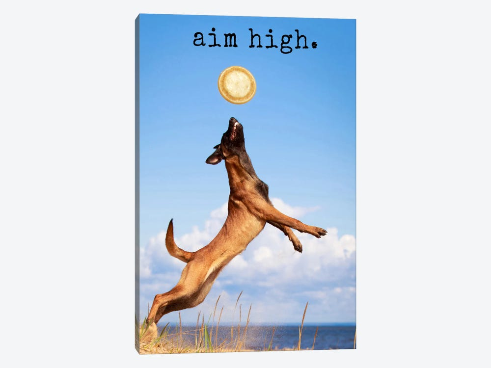Aim High - Realistic by Dog is Good and Cat is Good 1-piece Canvas Artwork