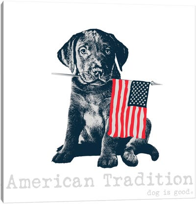 American Tradition Canvas Art Print