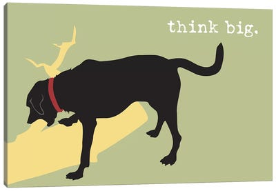 Think Big Canvas Art Print
