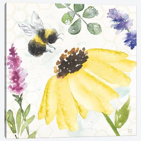 Bee Harmony III Canvas Print #DIJ26} by Dina June Canvas Artwork
