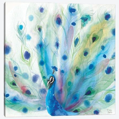 Peacock Glory V Canvas Print #DIJ54} by Dina June Canvas Art Print