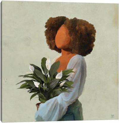 Peace Lilies Canvas Art Print